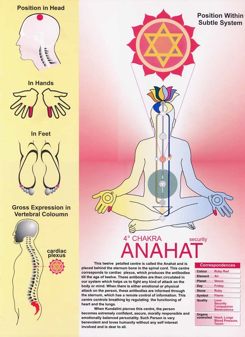 Download Freemeditation Com