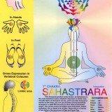 Sahasrara Chakra Chart